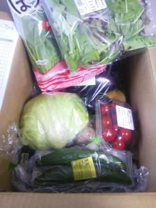 当選品 野菜